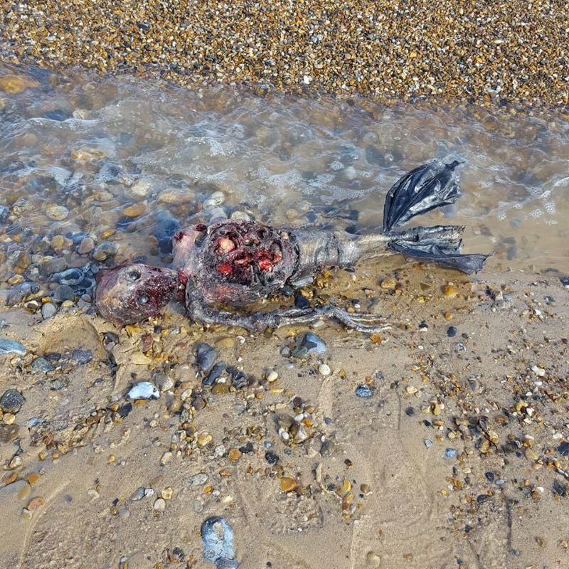 Полуразложившийся труп русалки на британском побережье