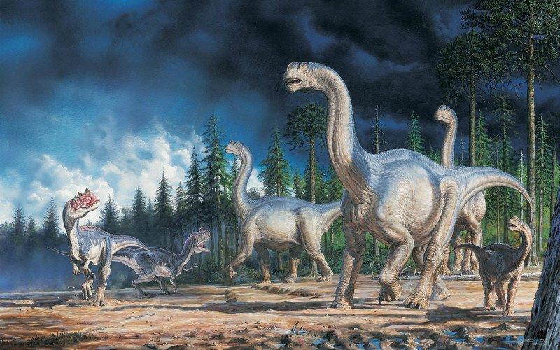Самые популярные заблуждения о динозаврах