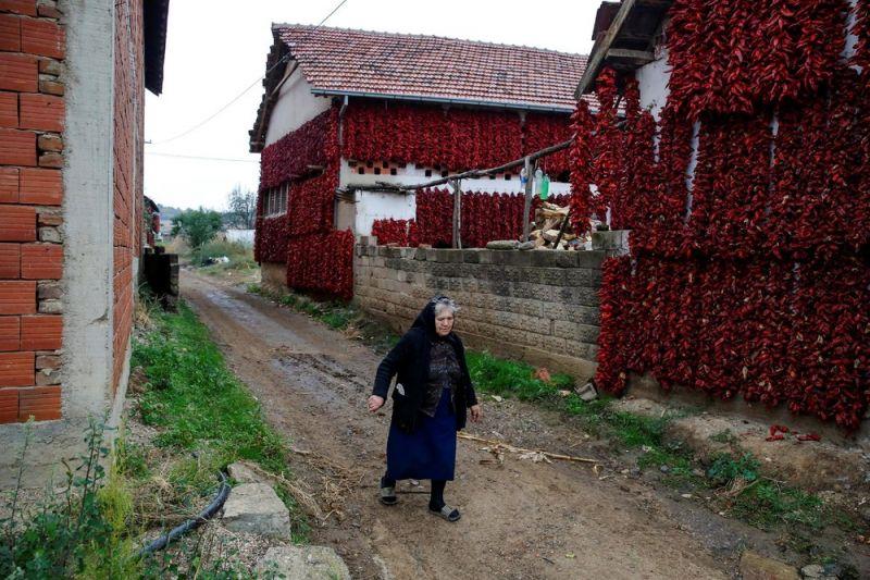 Деревня Donja Lakosnica - сербская столица паприки