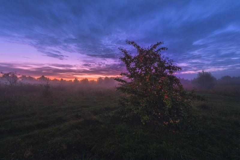 Красивые пейзажи от Евгения Жмака