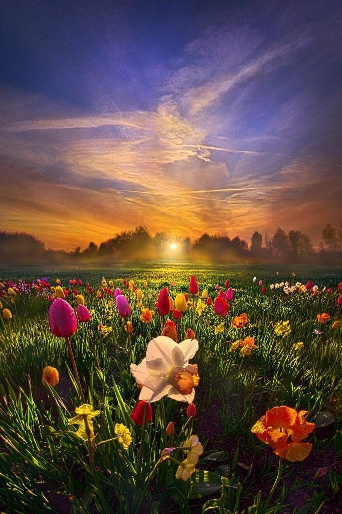 Великолепные пейзажи на закате, фотограф Phil Koch