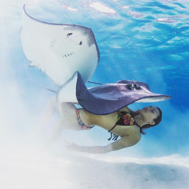 Очаровательная Рава Рэй плавает нагишом с акулами и скатами
