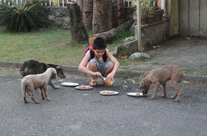 Благородные поступки добрых людей