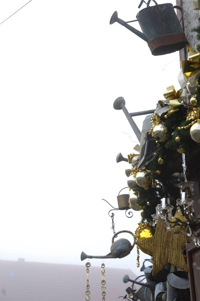 Французский цветочник украсил магазин 800-ми лейками