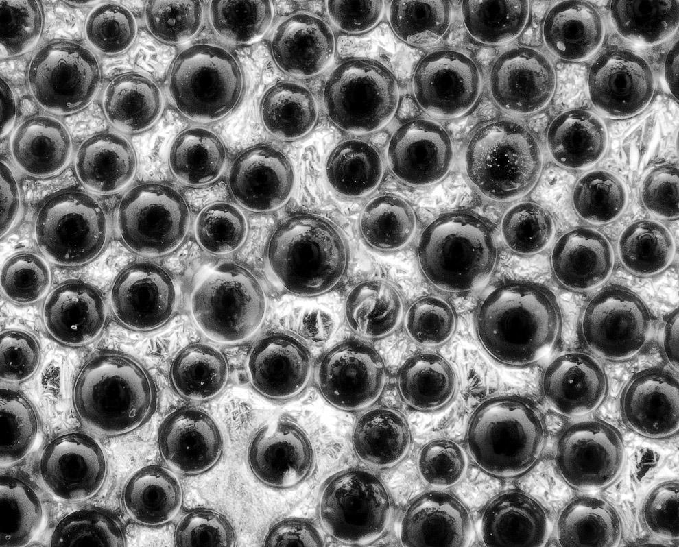Макросъемка мира тканей