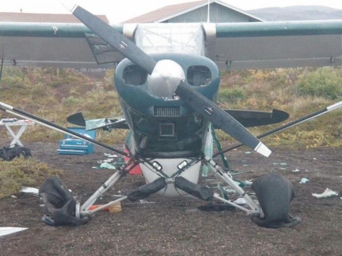 Медведь немного поломал самолет