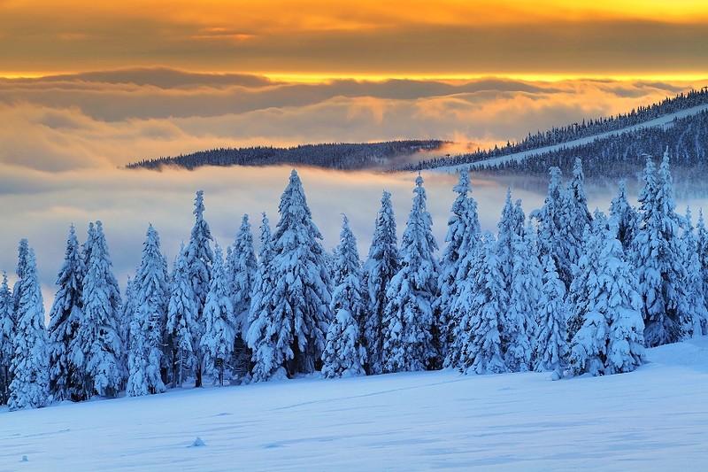 Красивые снимки от чешского фотографа Мирослава Главко