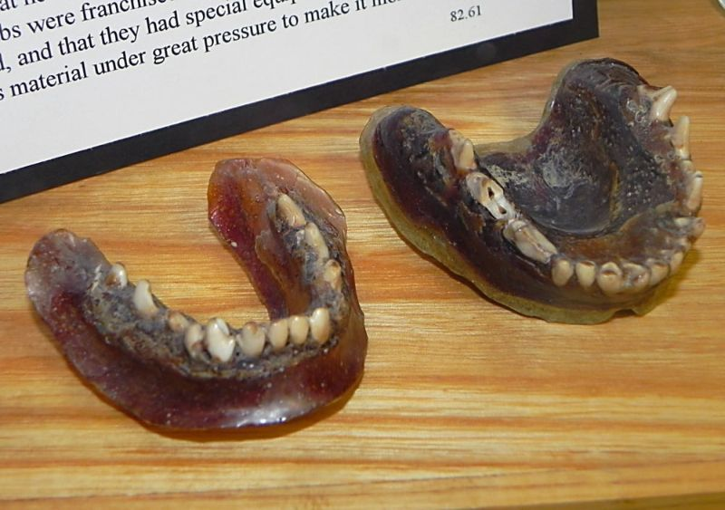 Зубные протезы из плавленной зубной щетки и клыков койота