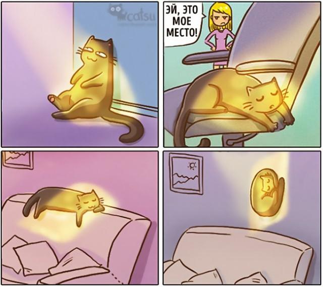Когда в доме появляется кот