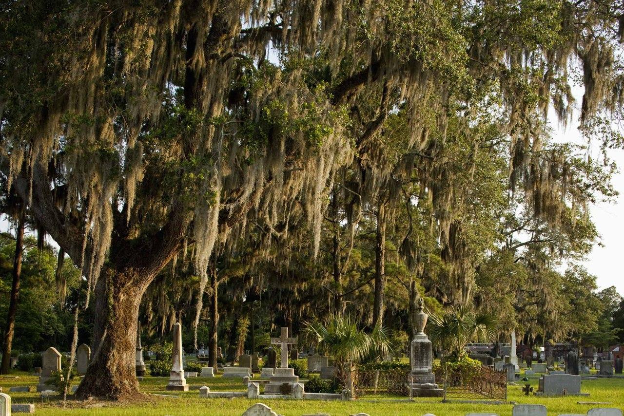 Самые красивые кладбища в мире