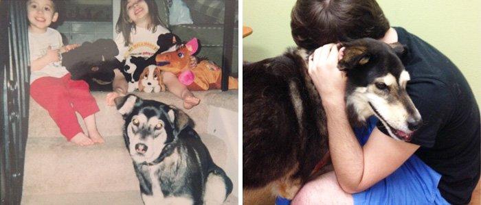 Собаки, которые выросли вместе со своими владельцами