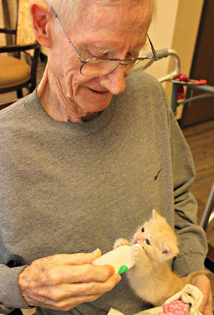Дом престарелых, где заботятся о пожилых людях и о брошенных животных