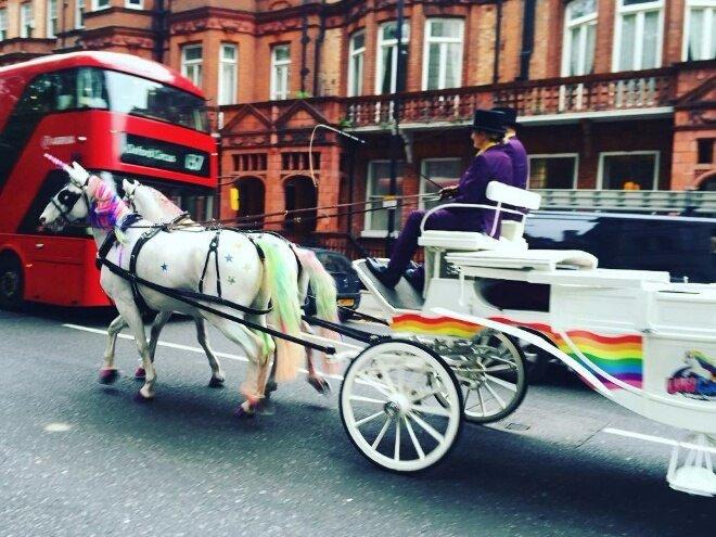 В Лондоне появился новый вид общественного транспорта — единороготакси