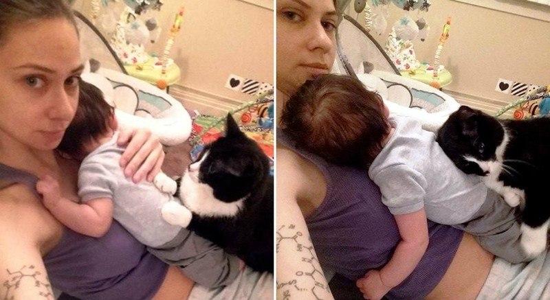 Кошка полюбила малыша еще до рождения, а теперь оберегает его