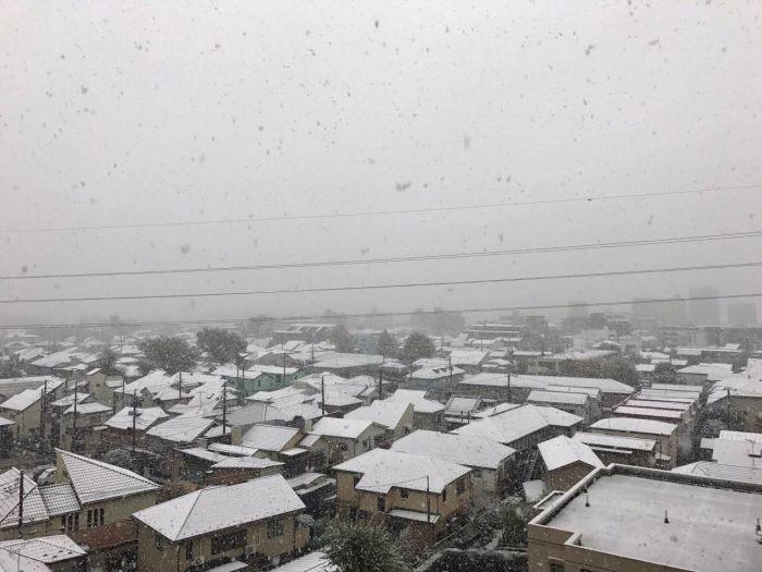 В Токио впервые за 54 года первый снег выпал в ноябре