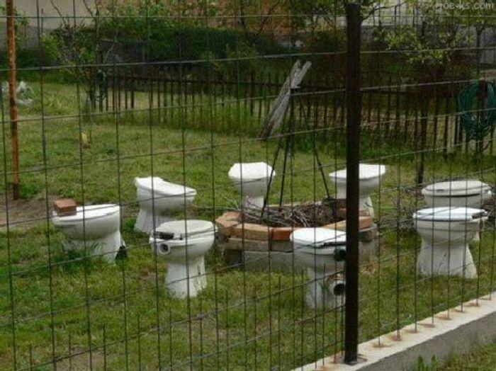 Туалетный юмор в картинках