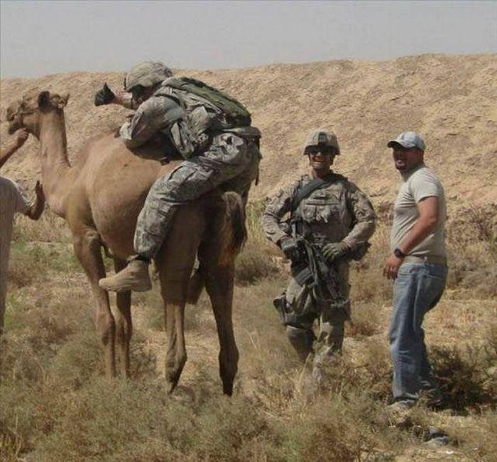 Армейские приколы из разных стран мира