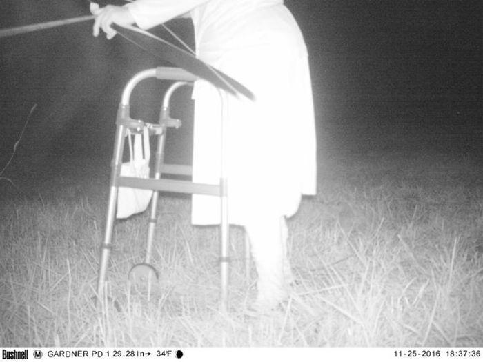Смешные фото, сделанные установленной в парке камерой