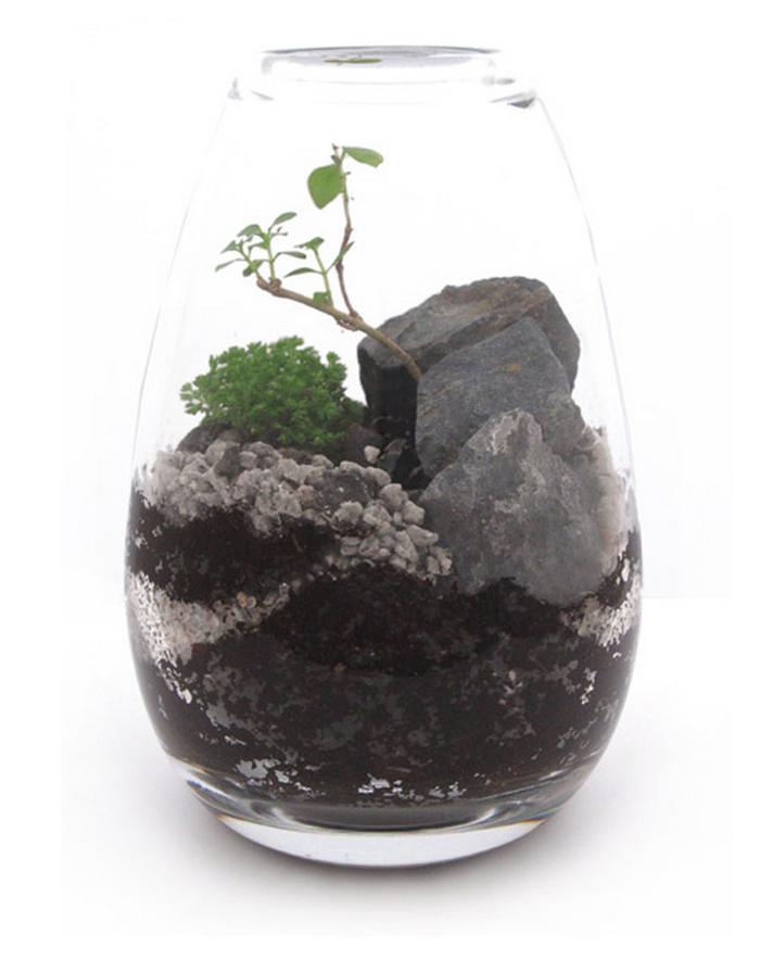 Миниатюрные флорариумы от James Modern