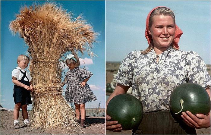 25 цветных фотографий о жизни целинников из журнала Огонек