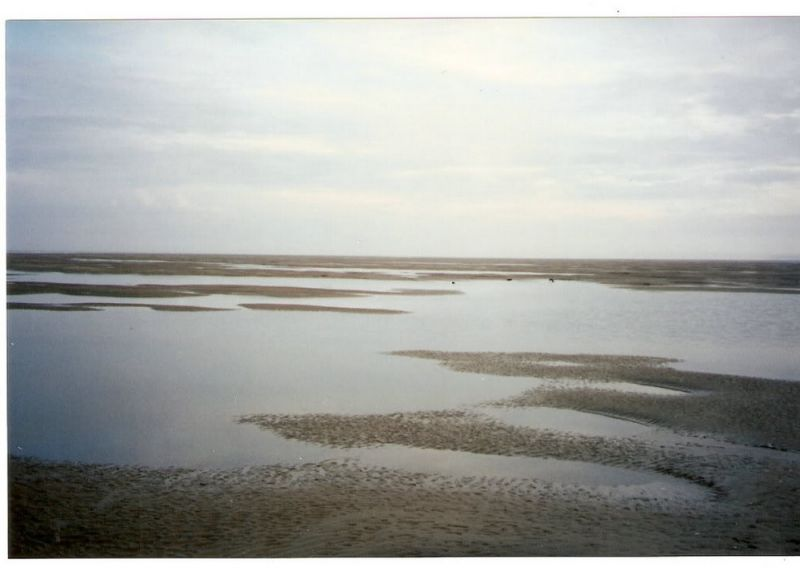 Опасные отмели: Пески Гудвина