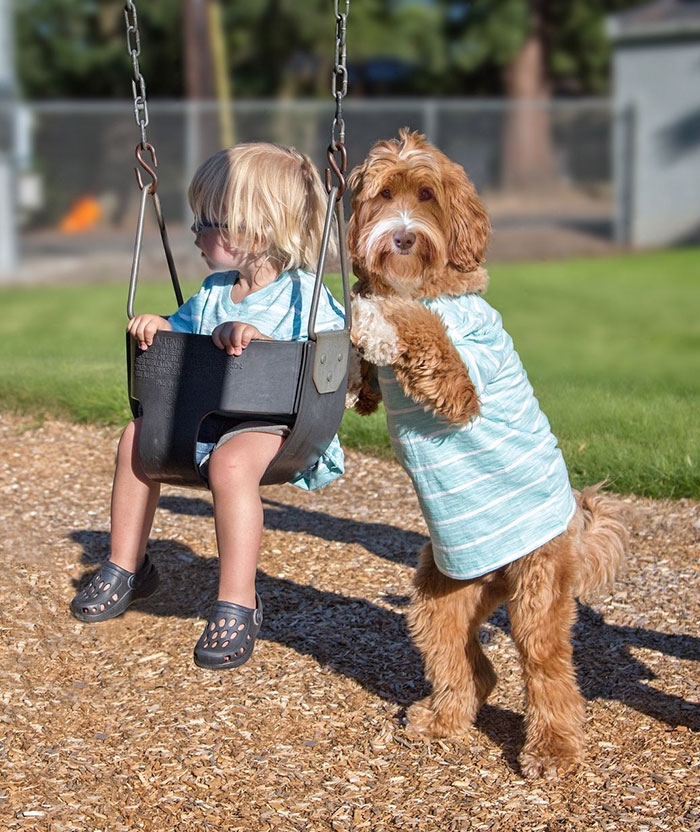 Трогательная дружба 3-х летнего мальчика и пса