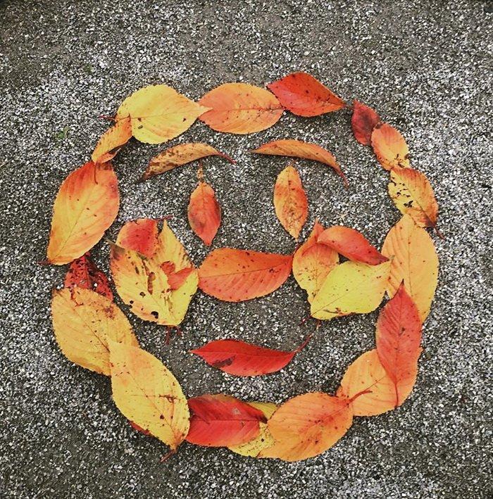 Произведения искусства из опавших листьев из Японии