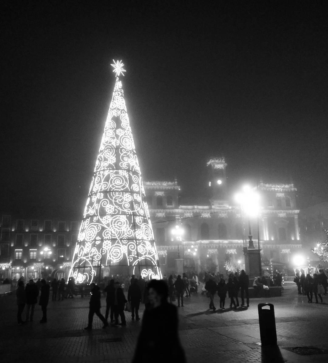 Новогодние ёлки в разных городах мира