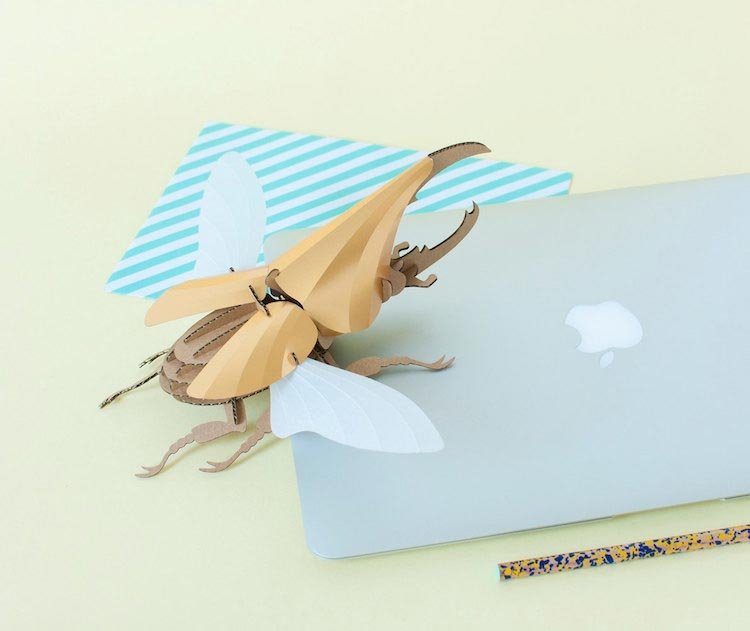 Крутые картонные 3D-пазлы, из которых можно собрать жуков