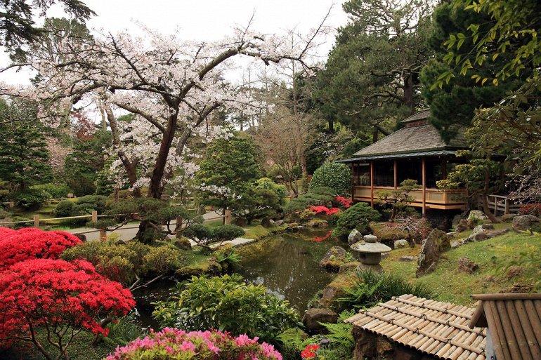 Японский чайный сад в парке Золотые Ворота
