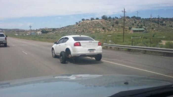 Чего только не увидишь на дорогах