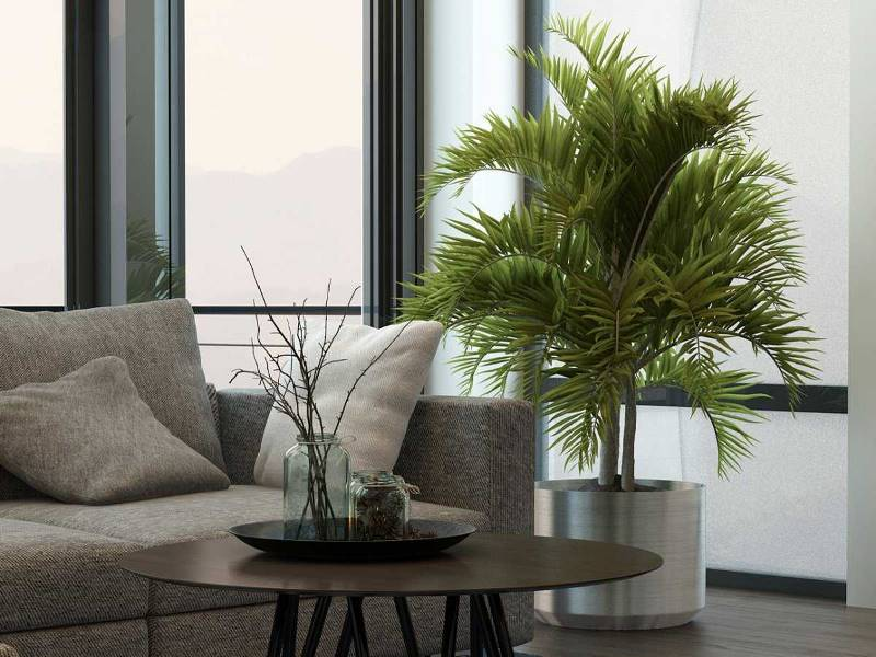 12 предметов, которые должны быть в гостиной