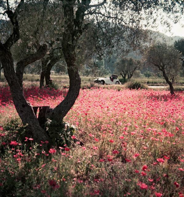 Яркие ретроснимки от Жака-Анри Лартига