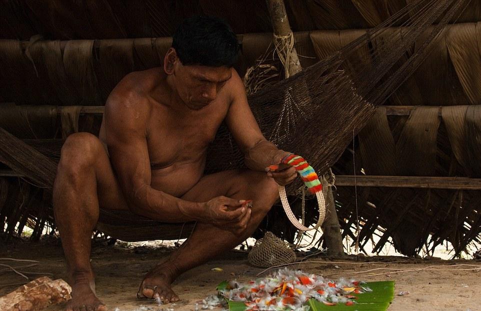 Племя гуарани в тропических лесах Эквадора