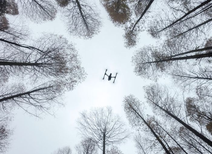 Лучшие фото с дронов 2016 года