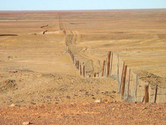 10 интересных фактов об Австралии