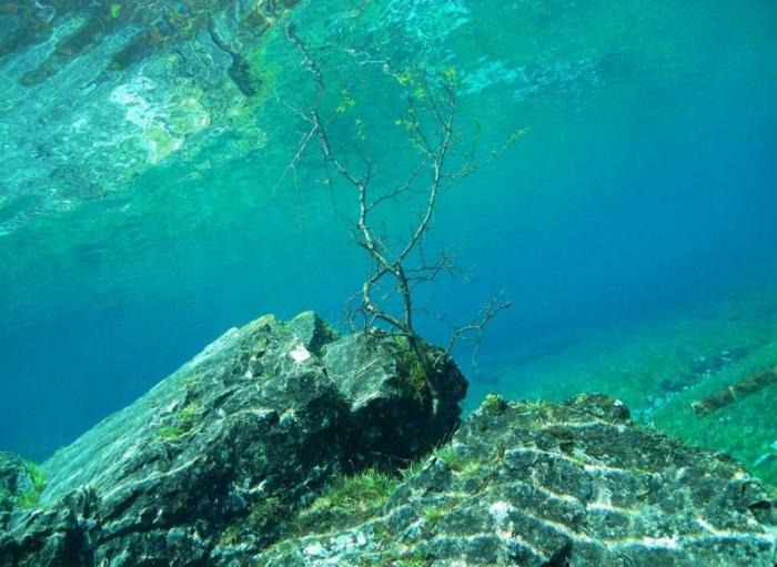 Подводный парк Грюнер Зее