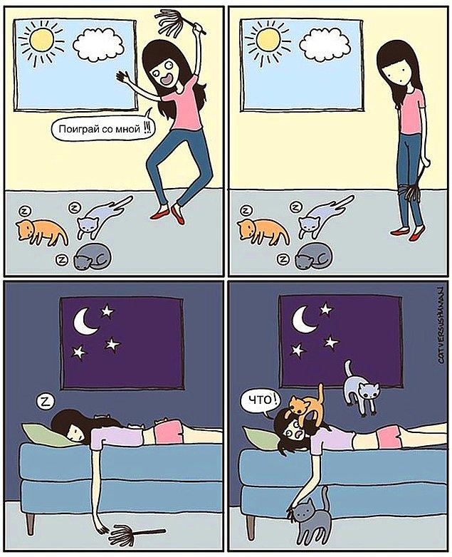 Проблемы жизни с котом в забавных комиксах