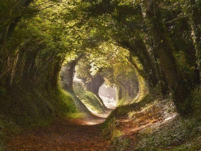 Ушедшие под землю старые дороги Европы