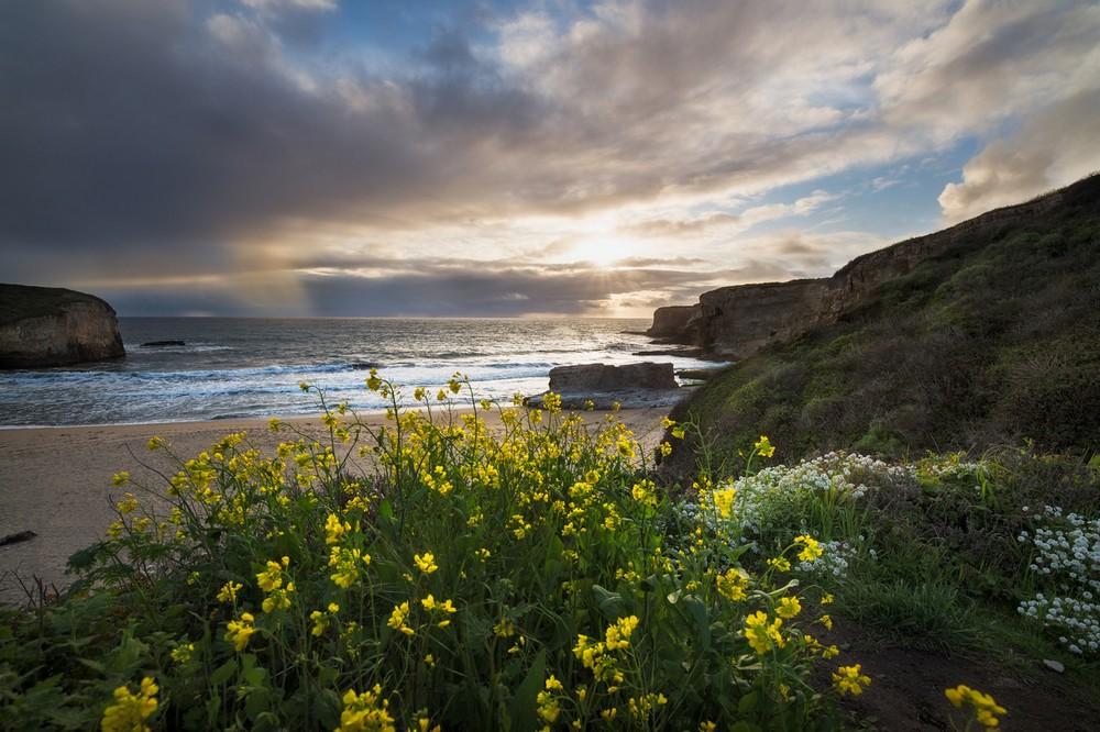 Восхитительные пейзажи от Мэтта Уокера