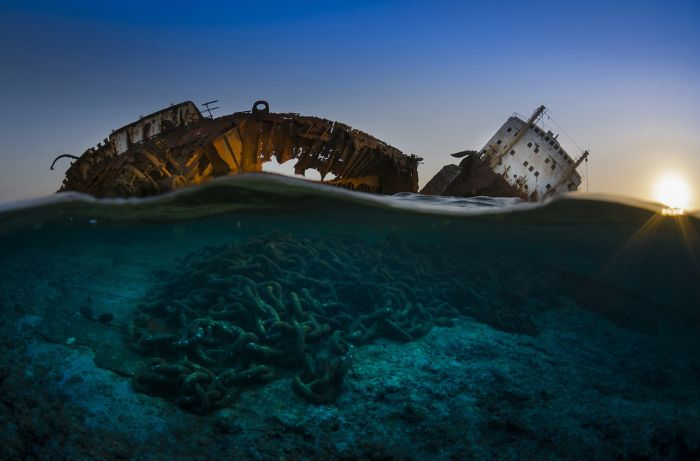 Финалисты конкурса Подводный фотограф 2017