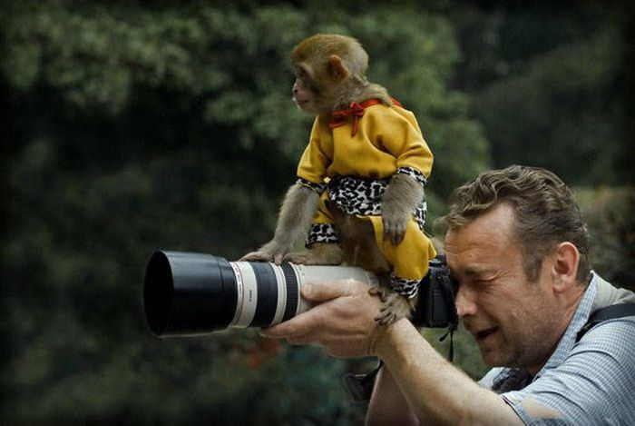 Фотографы за работой, готовые на все ради удачного кадра