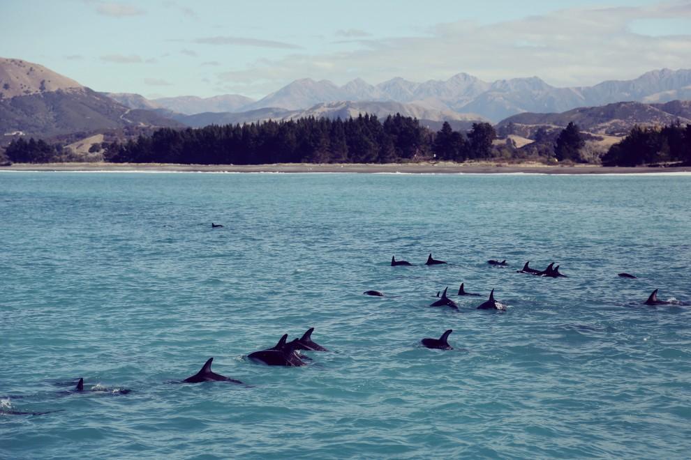 Красота Новой Зеландии, от которой захватывает дух