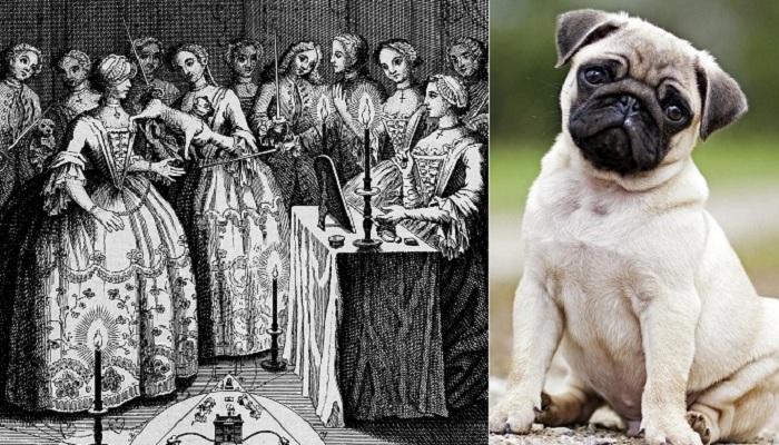 Орден Мопса: тайное общество XVII века