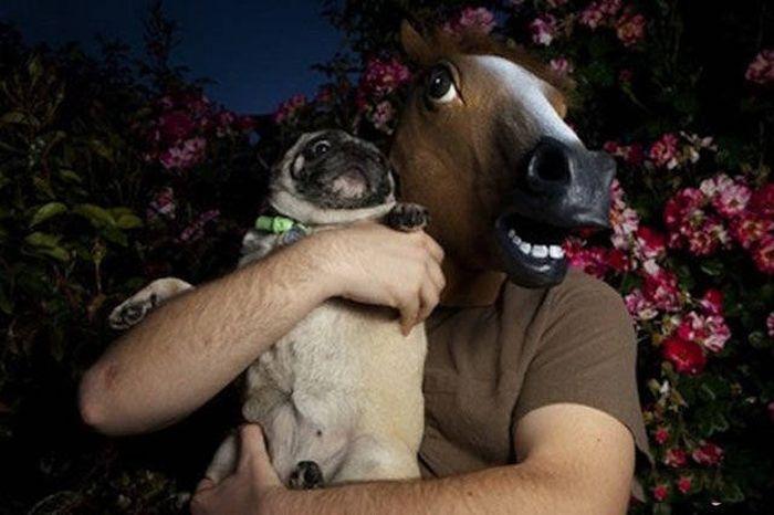 Прикольные фото с животными и их странными хозяевами