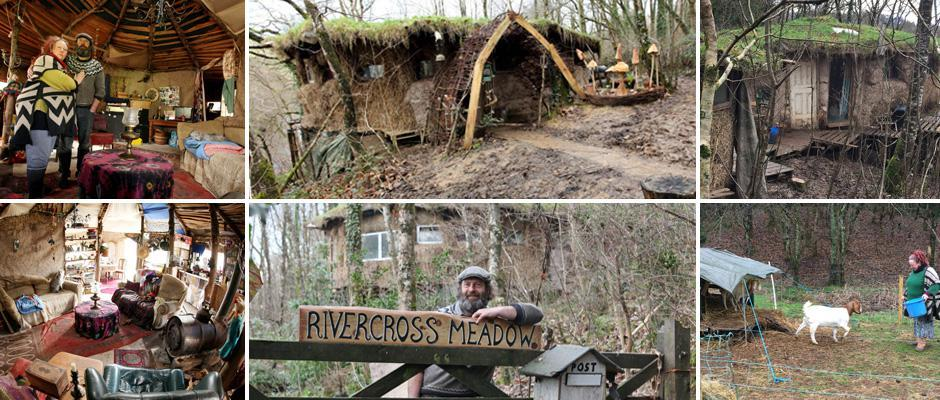 Семейную пару выселяют из леса, сбежавшую туда от арендного жилья