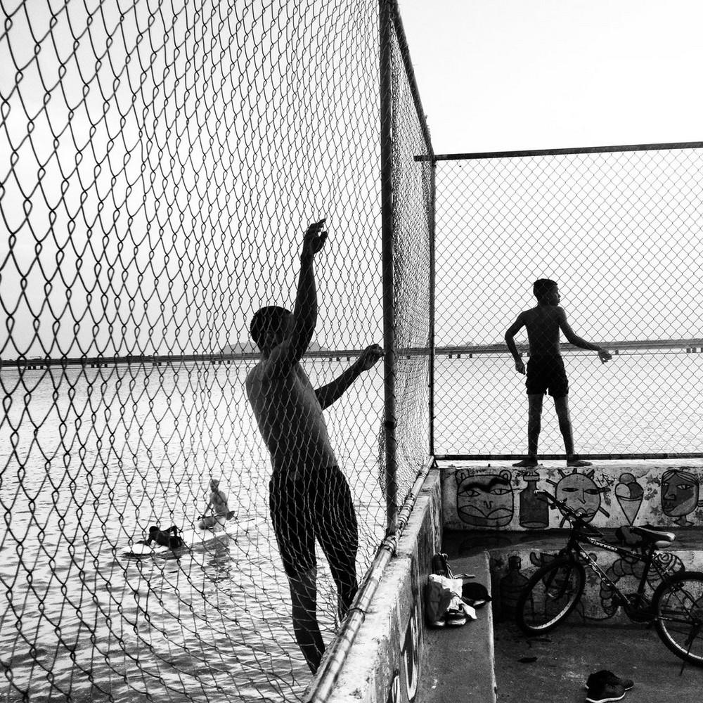 Финалисты конкурса Smithsonian Photo Contest 2016