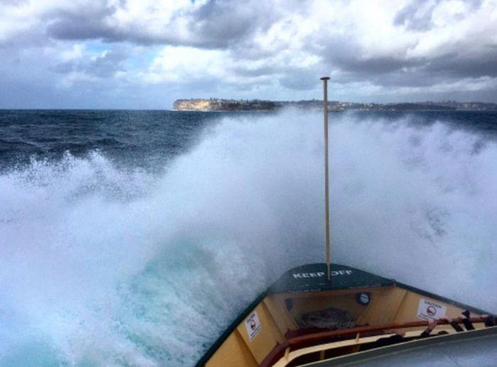 Сильные волны в гавани Сиднея