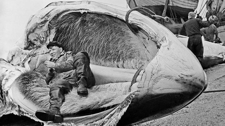Интересные снимки из жизни советских людей