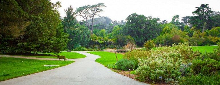 Ботанический Сад Сан-Франциско